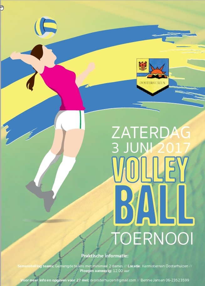 Poster Volleybal
